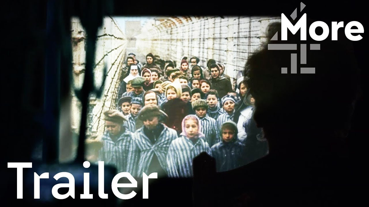Image for Auschwitz Untold in Color